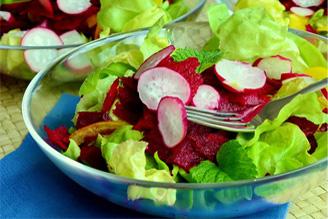昼食〜「サラダはヘルシー」だなんて単純な思い込みね